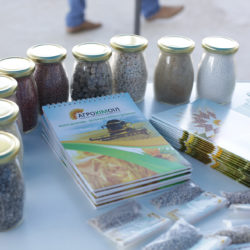 на фото продукція компанії Агрохімоіл по продажу оптом мінеральних добрив в Україні